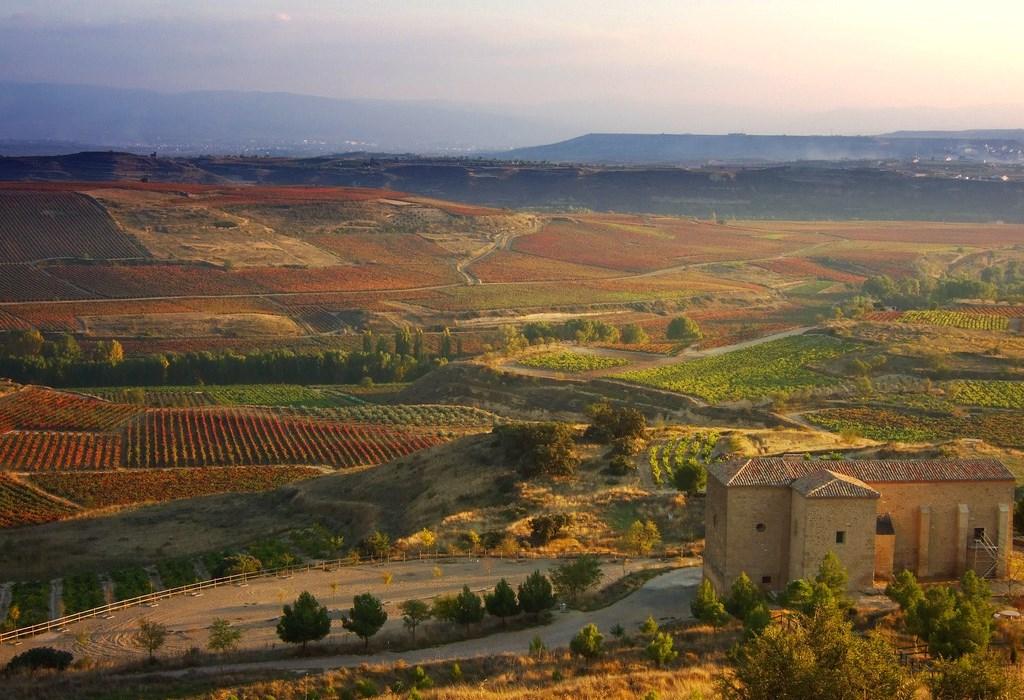 Виноградные долины. Фото: центр культуры вина Дерех ха-Яин