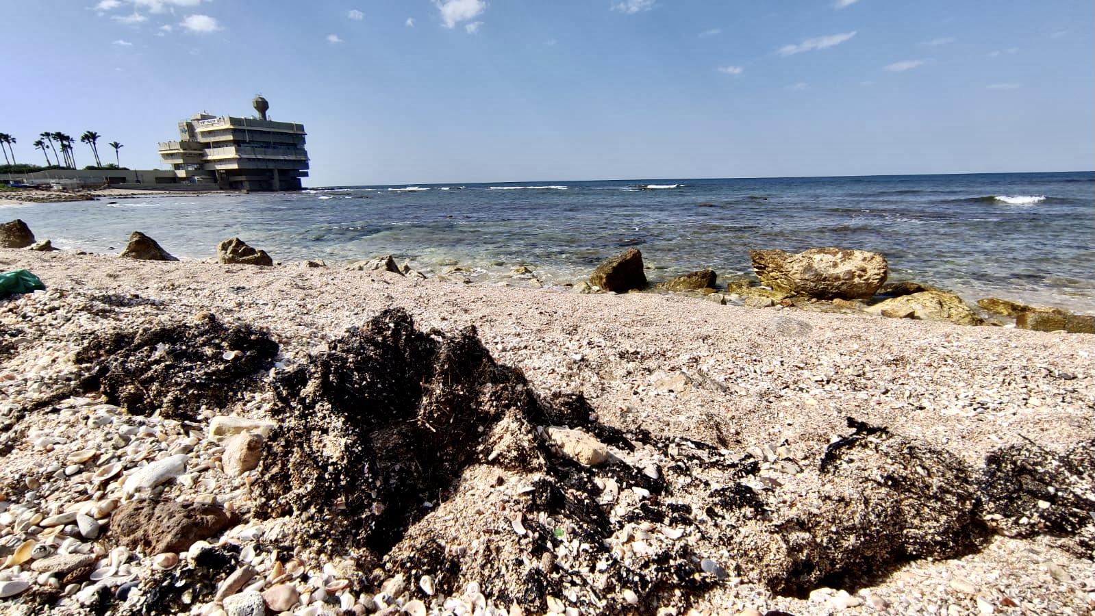 Спасение пляжей: фото Ольги Навроцкой «Clean City-Чистый город»