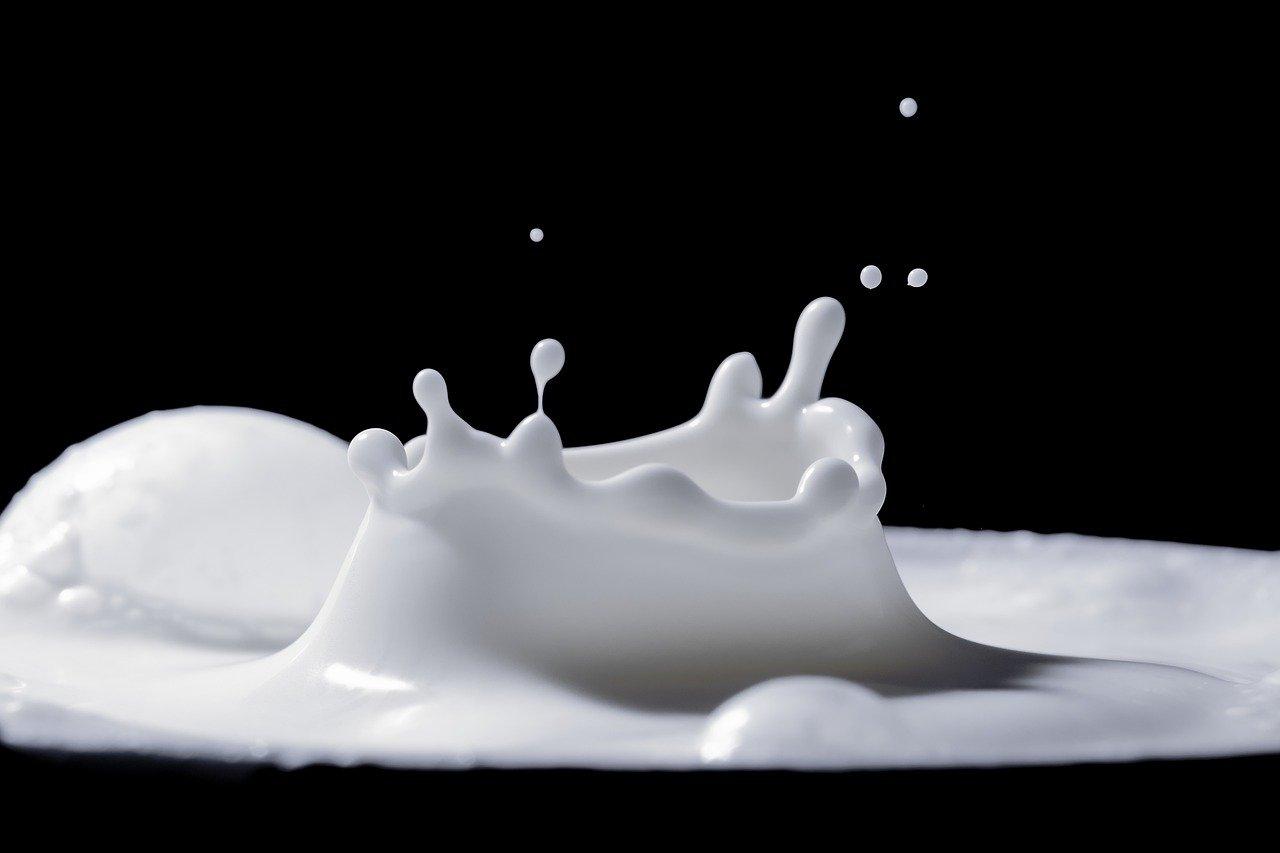 Альтернативное молоко: Фото: Myriams-Fotos Pixabay