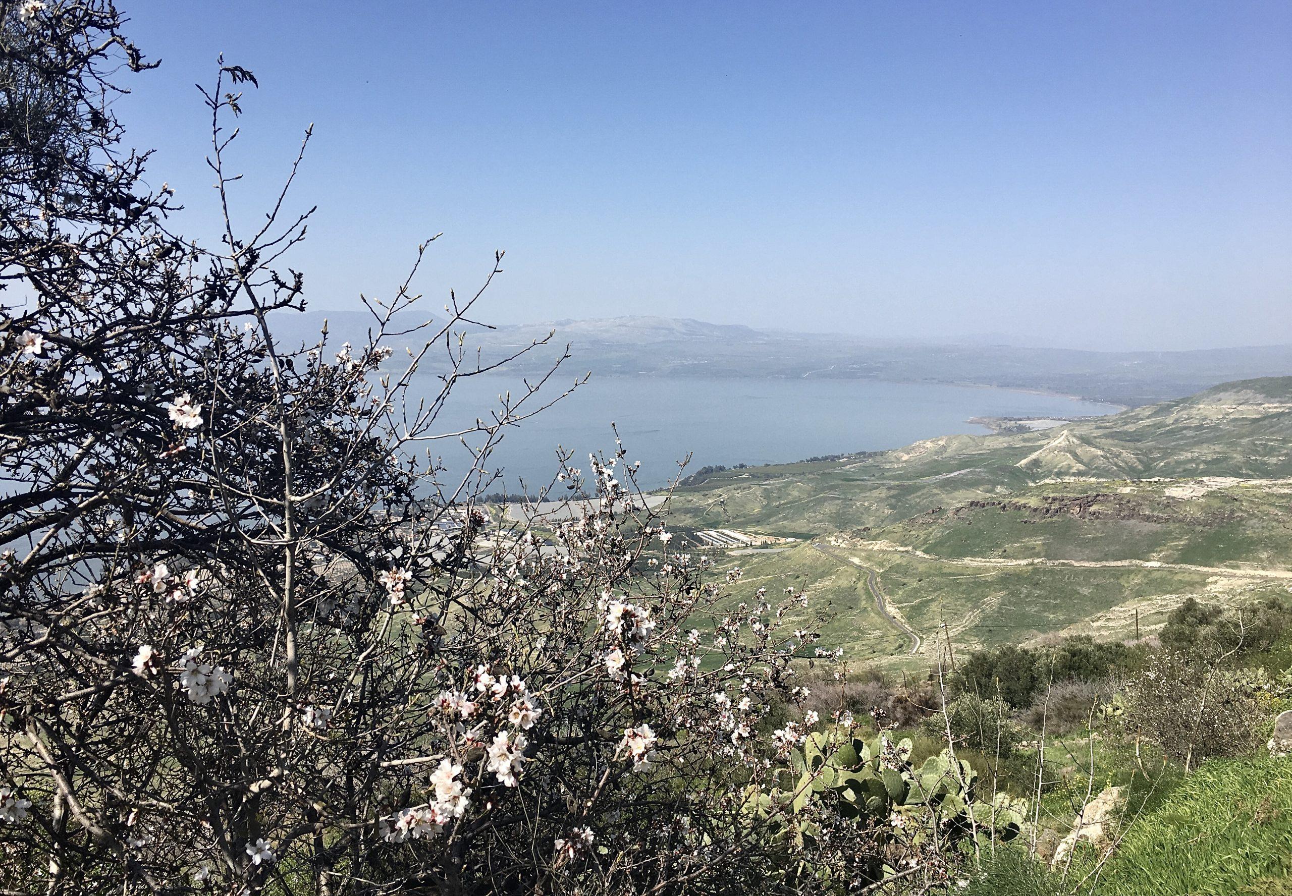 Путешествия по стране. Вид на озеро Кинерет. Фото Елены Шафран