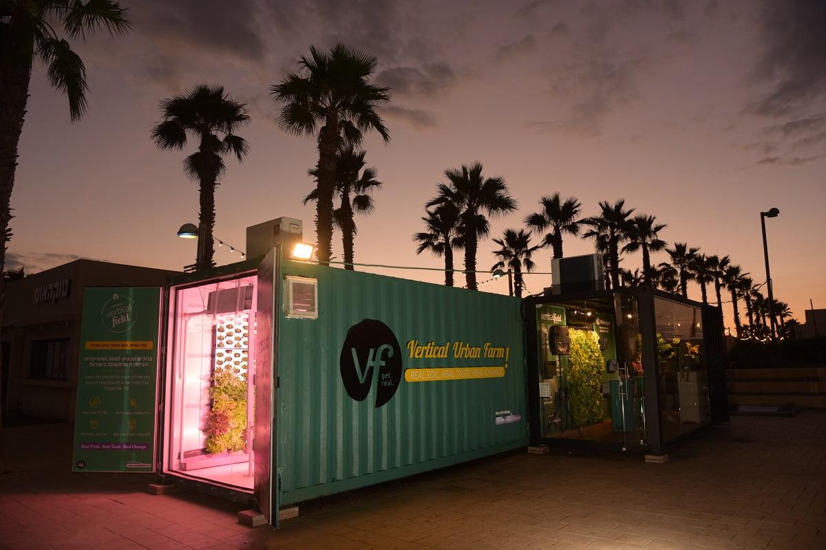 Облачное земледелие: так выглядит умная ферма. В контейнере выращивают зелень для магазинов и ресторанов. Фото Гари Налбандян. NoCamel
