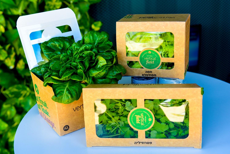 Облачное земледелие: умная зелень готова к продаже. NoCamel